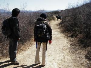 2010_m02_Yunnan_16
